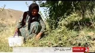 Iran Jalileh village, Kurdistan province روستاي جليله استان كردستان ايران