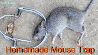 How To Make a Mouse Trap | Best Homemade Mouse trap