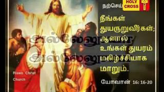 Holy Cross Tv Daily Catholic Tamil Mass - 25-05-2017