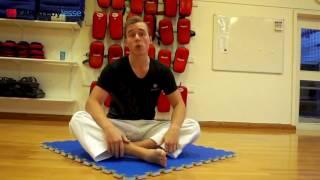 Karate Flexibility & Mobility (Free Preview)