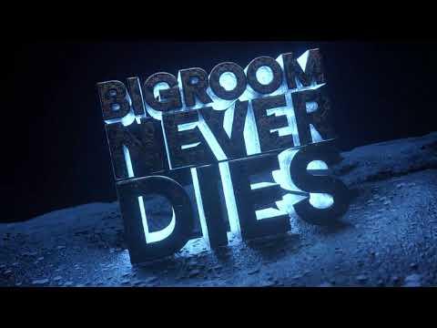 Xxx Mp4 Hardwell Blasterjaxx Feat Mitch Crown Bigroom Never Dies Visual Video 3gp Sex