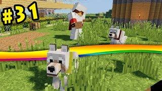 Minecraft Hardcore, Super Casa dos Cachorros!