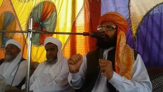 Maulana Abdul Malik Siddiqui Sahib