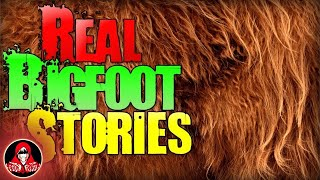 7 REAL Bigfoot Sightings - Darkness Prevails