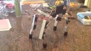 TinkerBot - 4-legged walking robot