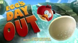 Angry Birds Bajka Po Polsku – Kilka Odcinków – Bajki Dla Dzieci Po Polsku 2015