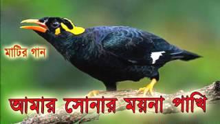 Bangla Song - আমার সোনার ময়না পাখি - OSMAN KHAN.