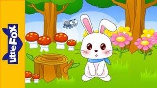 Little Peter Rabbit | Song for Kids by Little Fox