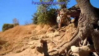 Hot Chick Rope Swing Fail Faceplant