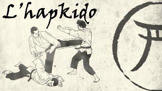 9eme kyu: l'hapkido
