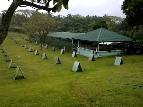 LYG FARM Lipa Batangas 2014