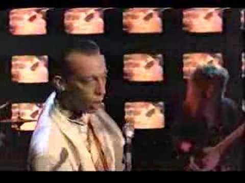 Xxx Mp4 Talking Heads Wild Wild Life 3gp Sex