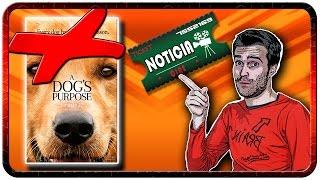 A DOG'S PURPOSE - HOLLYWOOD MALTRATA A LOS PERROS!