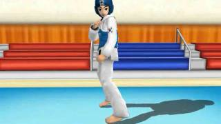 Full 3D Taekwondo