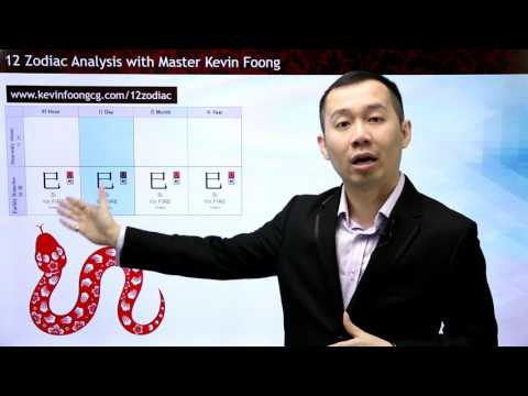 2017 Snake Prediction 12 Chinese Zodiac by Master Kevin Foong