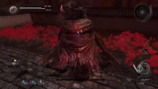 Nioh Twilight Mission Boss Ogress [Last Chance Tiral]