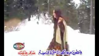 afshan zebi best song