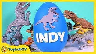 HUGE Jurassic World Play Doh Surprise Egg Indominus Rex, T-Rex, Surprise Toys & Dino Fossil Kit