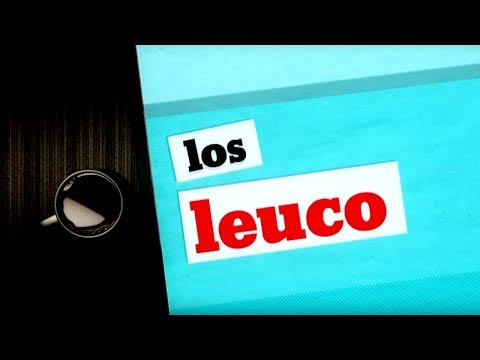 Los Leuco (30/05/2017)