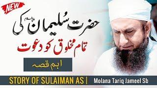 Story of Prophet Sulaiman as - اہم قصہ | Maulana Tariq Jameel Latest Bayan 14 February 2019