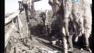 """""""Historias de la Argentina secreta"""": el rito mapuche Nguillatun, 1984"""
