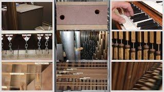 How an Organ Makes Music