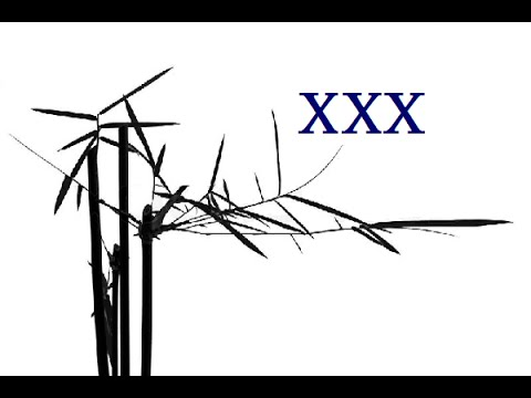 Tao Te Ching - Chapter XXX