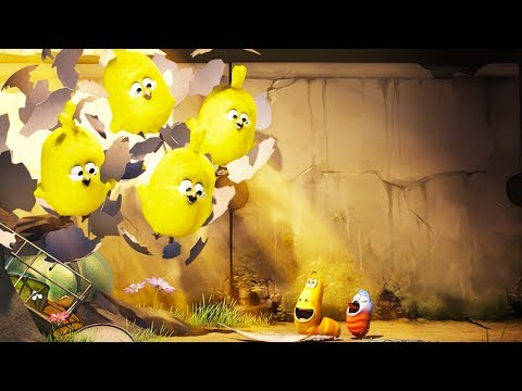 LARVA EASTER EGG HUNT Cartoon Movie Cartoons For Children Larva Cartoon LARVA Official