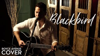 The Beatles - Blackbird (Boyce Avenue acoustic cover) on Spotify & Apple