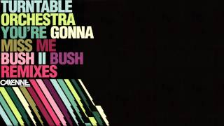 Turntable Orchestra - You're gonna miss me (Bush 2 Bush Simple Bass Mix)