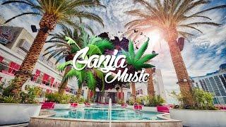 Ziggy Marley - Beach In Hawaii (Viga Remix)