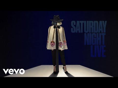 Sia - Bird Set Free (Live From SNL)