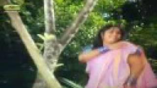 Molla Barir Bou song 3