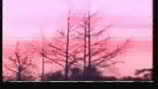 Kimanga sda choir _hakuna ombi - YouTube
