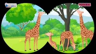 Wild animals by Interactive iLLUME - KidzeeIndia