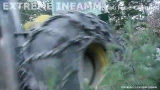 SKIDDER TIMBERJACK 460 TERMINATOR IN FOREST