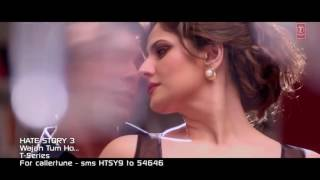 Wajah Tum Ho Full Video Song   Hate Story 3   Zareen Khan, Karan Singh Armaan Malik