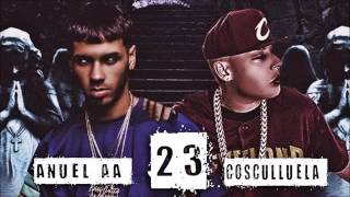 Cosculluela Ft Anuel AA - 23