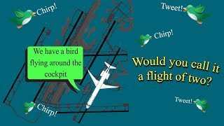 [FUNNY ?¿ ATC] Delta returns to Detroit due to a bird in the cockpit!