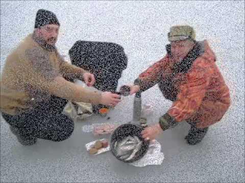 рыбалка в череповецком районе запрещена