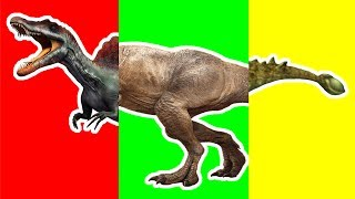 Wrong Heads Dinosaurs! Learning Dinosaurs Triceratops, Tyrannosaurus T-rex Finger Family song Toys.