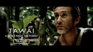 TAWAI - A voice from the forest | Trailer (Theatrical) | A film from Bruce Parry | In cinemas Now