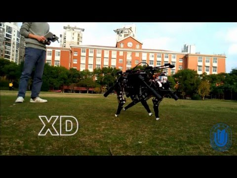 XDog: Small and  Low-cost Four Legged Robot ( Hello World )
