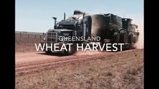 QLD Wheat Harvest 2015