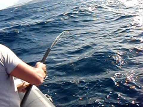 pesca tenerife 88 kilos