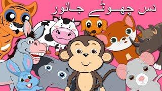 Ten Little Animals Jumping on The Bed in Urdu   دس چھوٹے جانور   Urdu Nursery Rhymes for Children