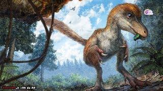 حيوانات تعيسة انقرضت لأسباب غبيةوسخيفة للغاية لا تصدق !!