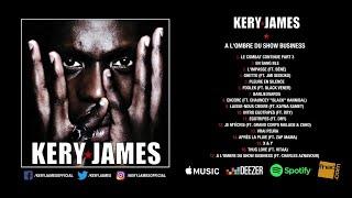 Kery James - À l'ombre du show business