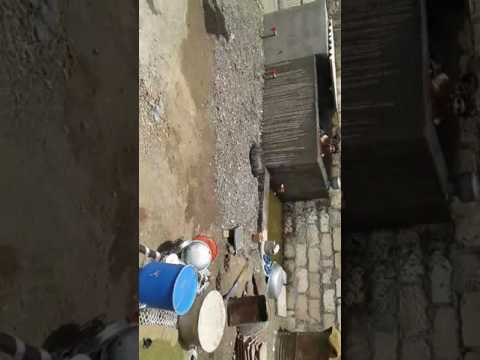 Jenil karmur in bath in my village