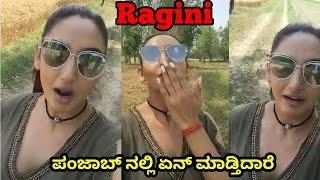 Ragini dwivedi in Punjab | ragini dwivedi full video  | kannada actress |